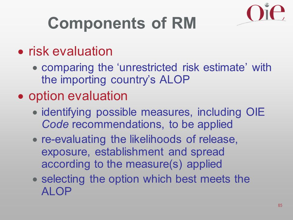 Components of RM risk evaluation option evaluation