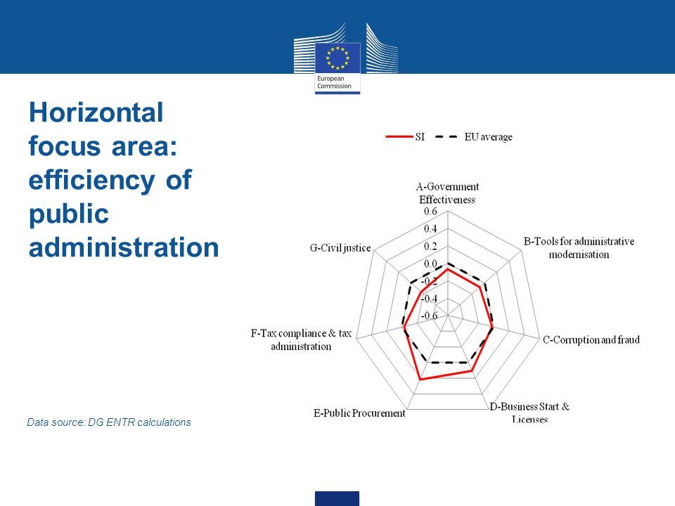 Horizontal focus area: efficiency of public administration