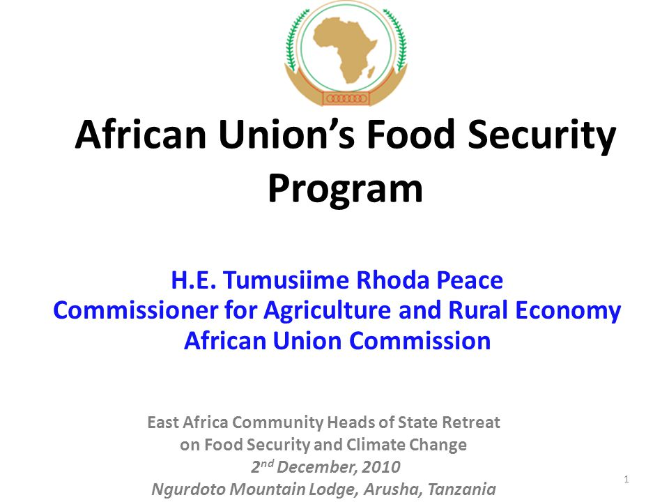 African Union's Food Security Program