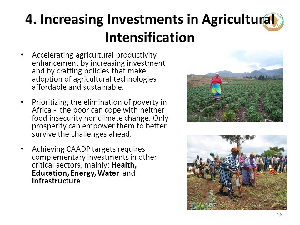 4. Increasing Investments in Agricultural Intensification