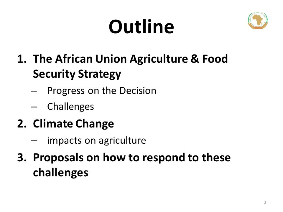 Outline The African Union Agriculture & Food Security Strategy