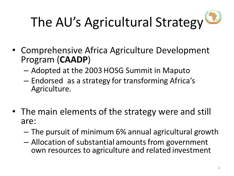 The AU's Agricultural Strategy