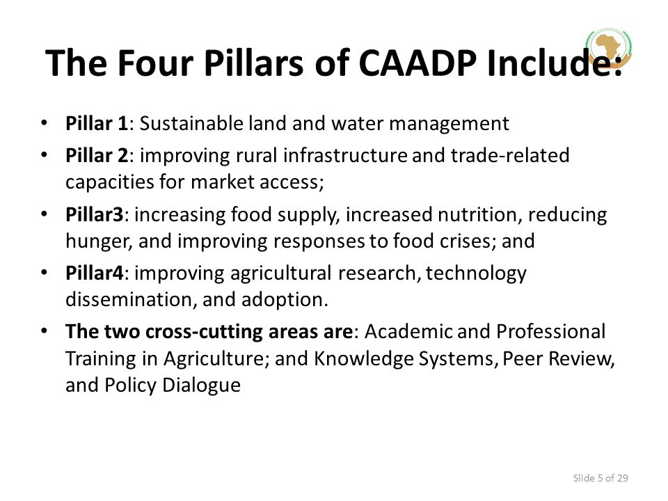 The Four Pillars of CAADP Include: