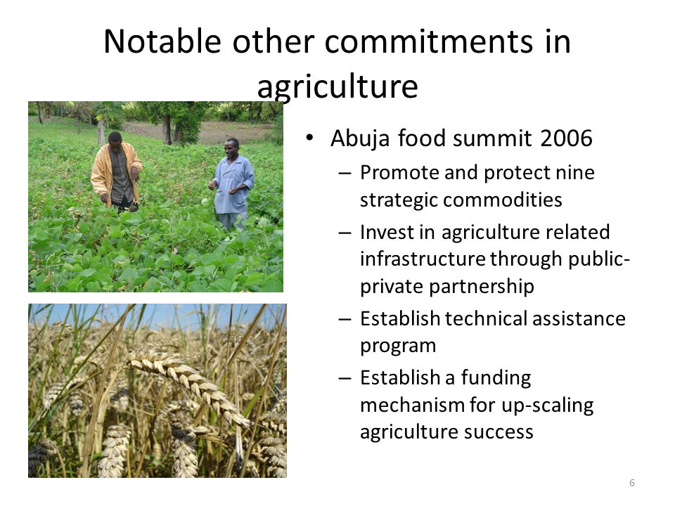 Notable other commitments in agriculture