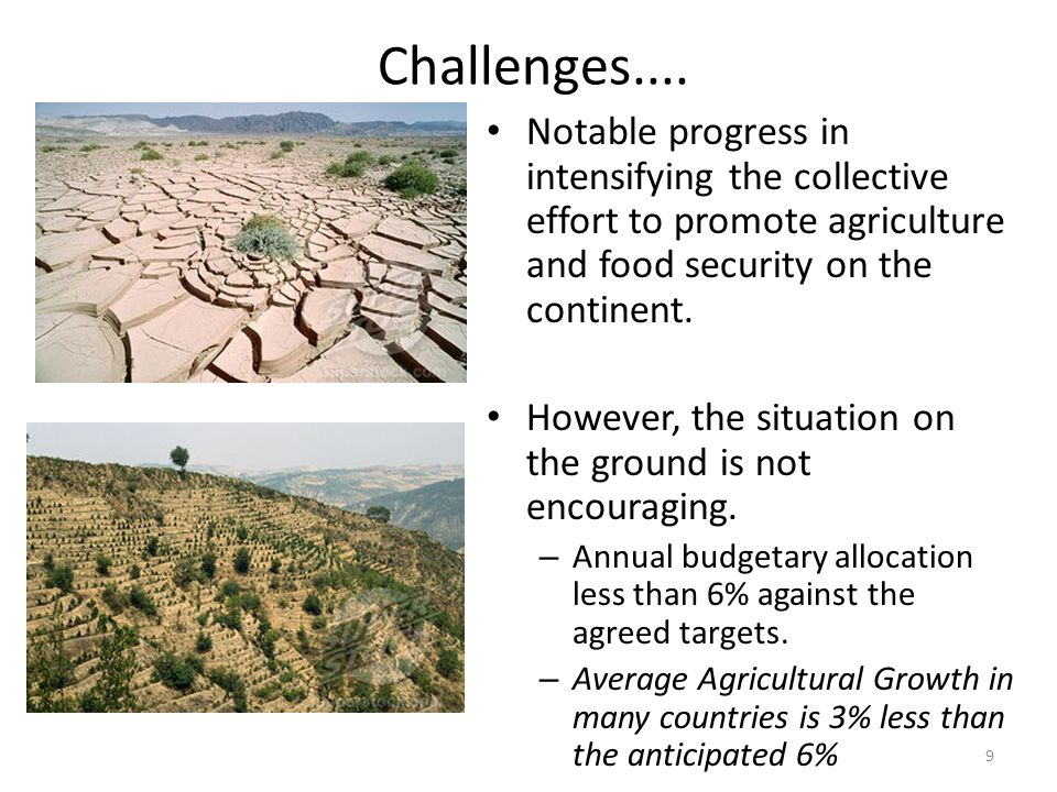 Challenges.... Notable progress in intensifying the collective effort to promote agriculture and food security on the continent.