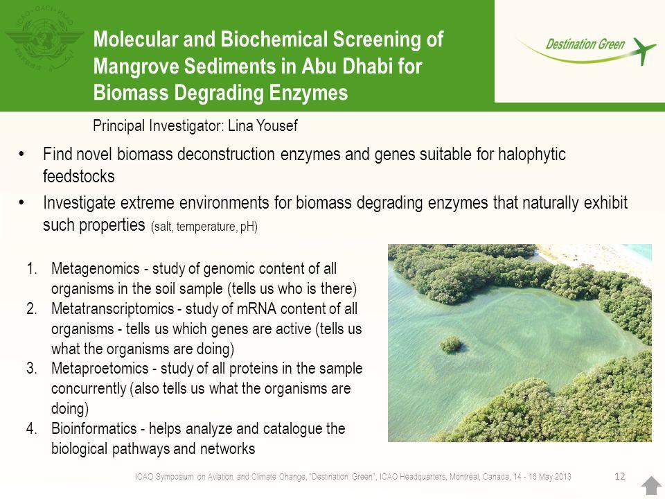 Molecular and Biochemical Screening of