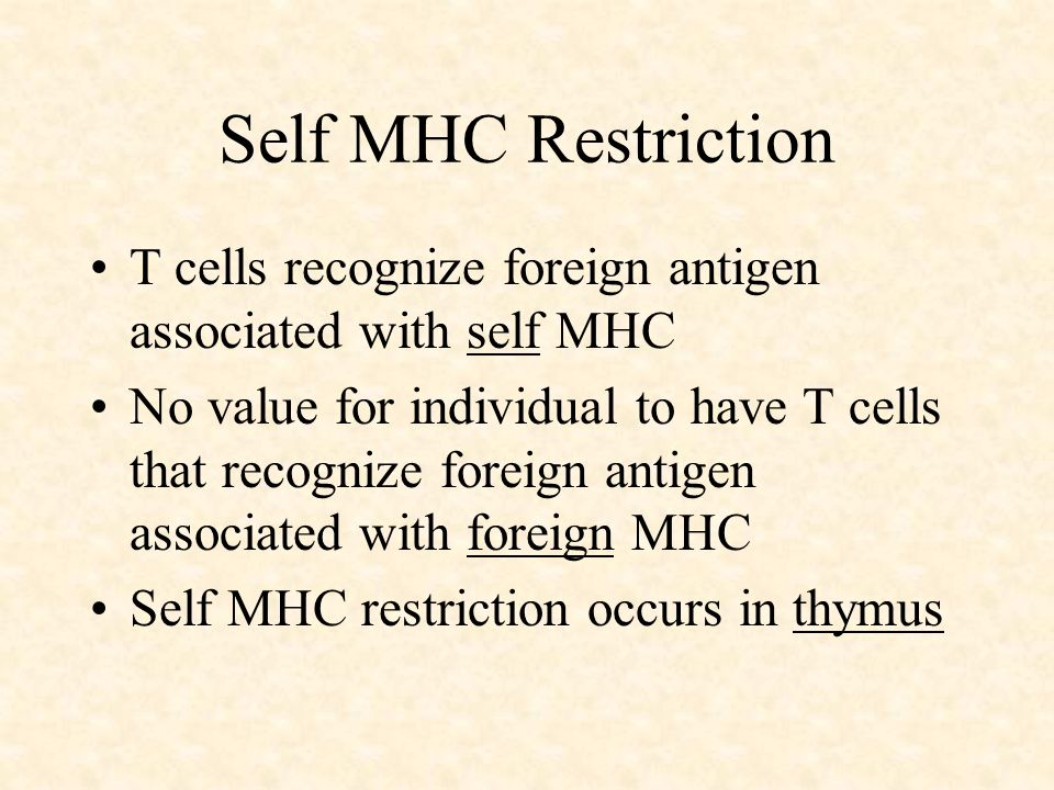 Self MHC Restriction T cells recognize foreign antigen associated with self MHC.