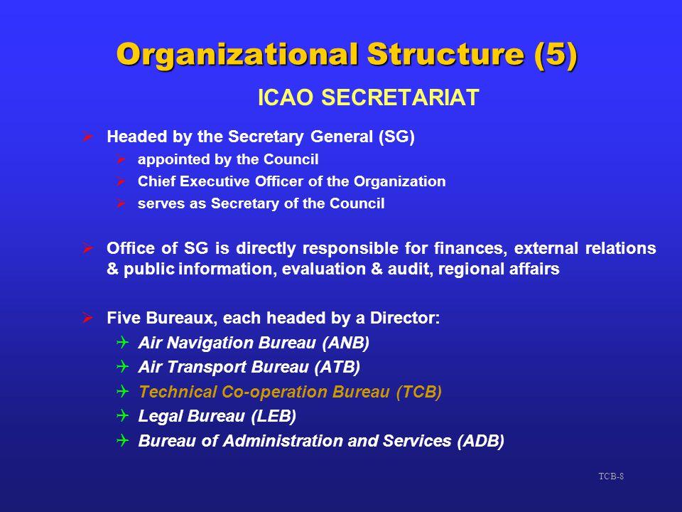 Organizational Structure (5)