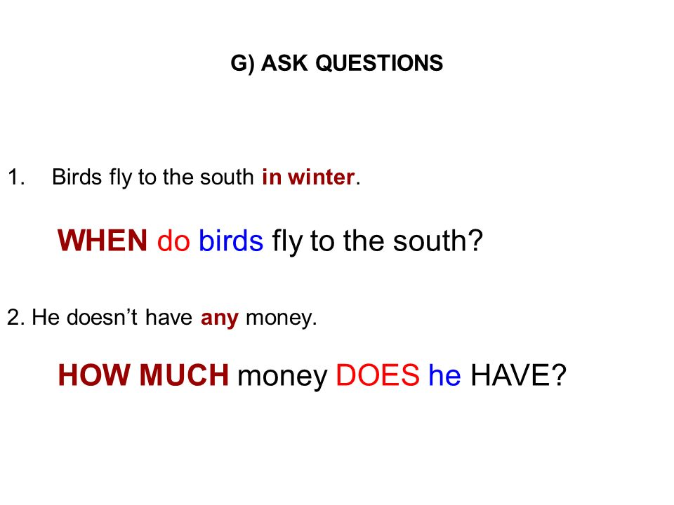 WHEN do birds fly to the south