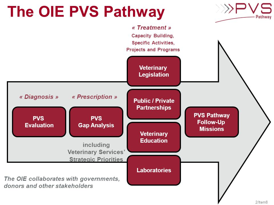 Veterinary Services' Strategic Priorities