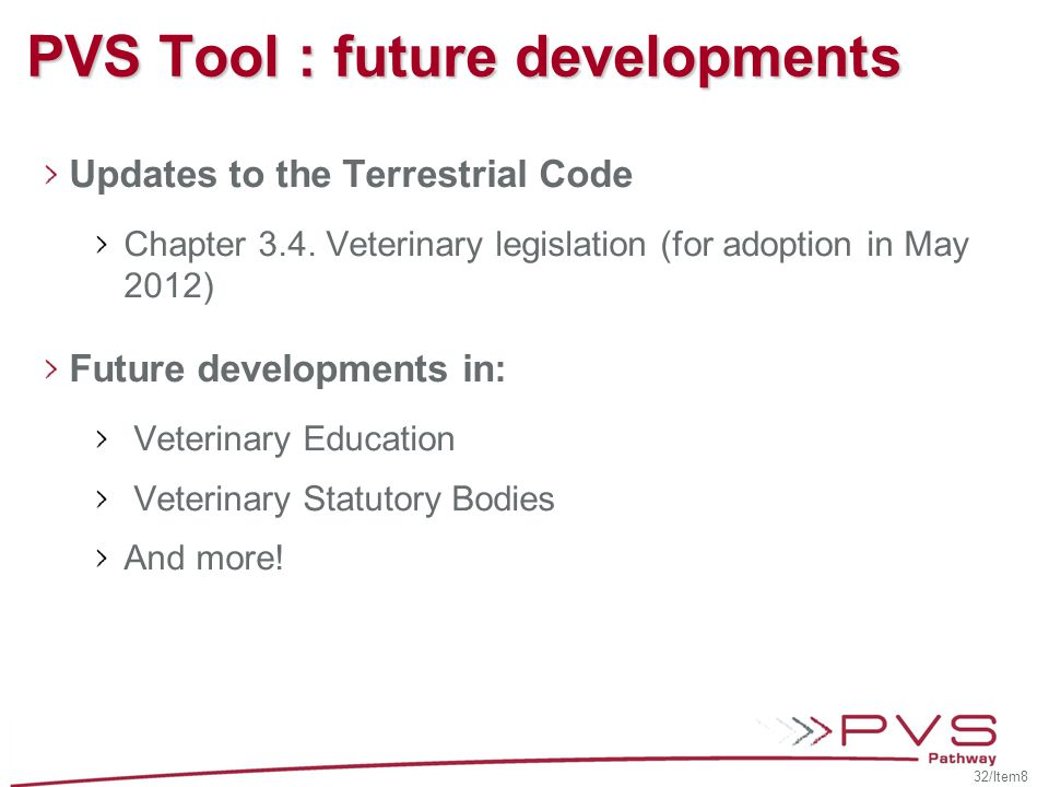 PVS Tool : future developments