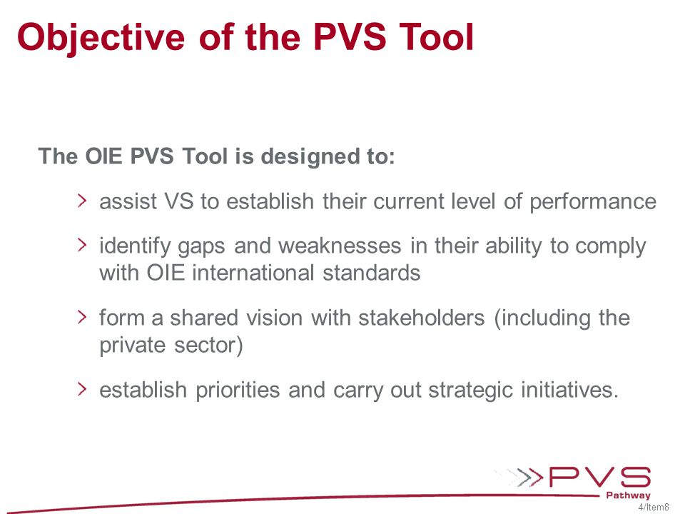 Objective of the PVS Tool