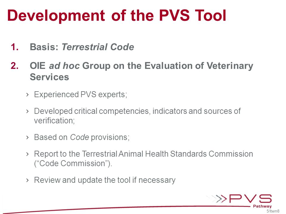 Development of the PVS Tool