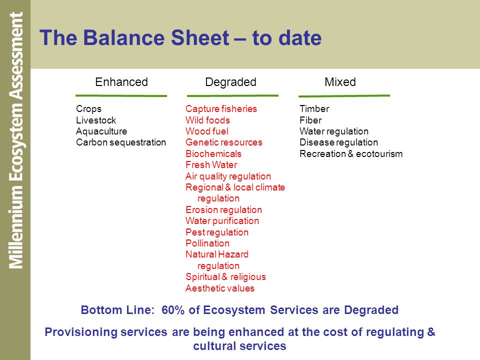 The Balance Sheet – to date