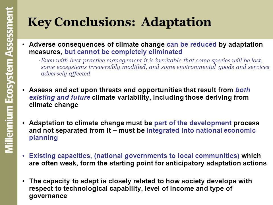 Key Conclusions: Adaptation