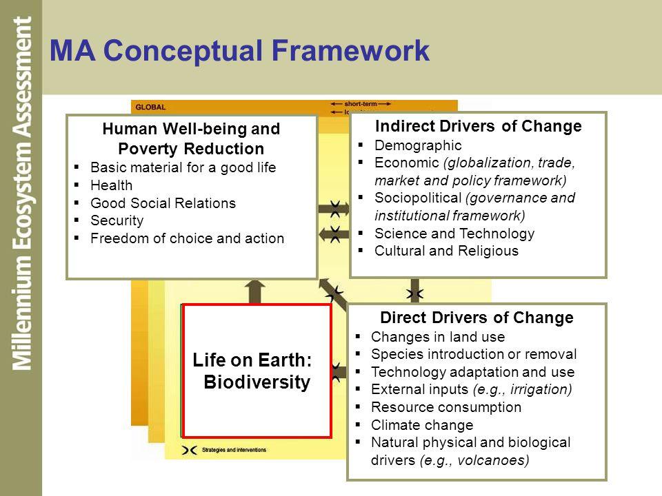 MA Conceptual Framework