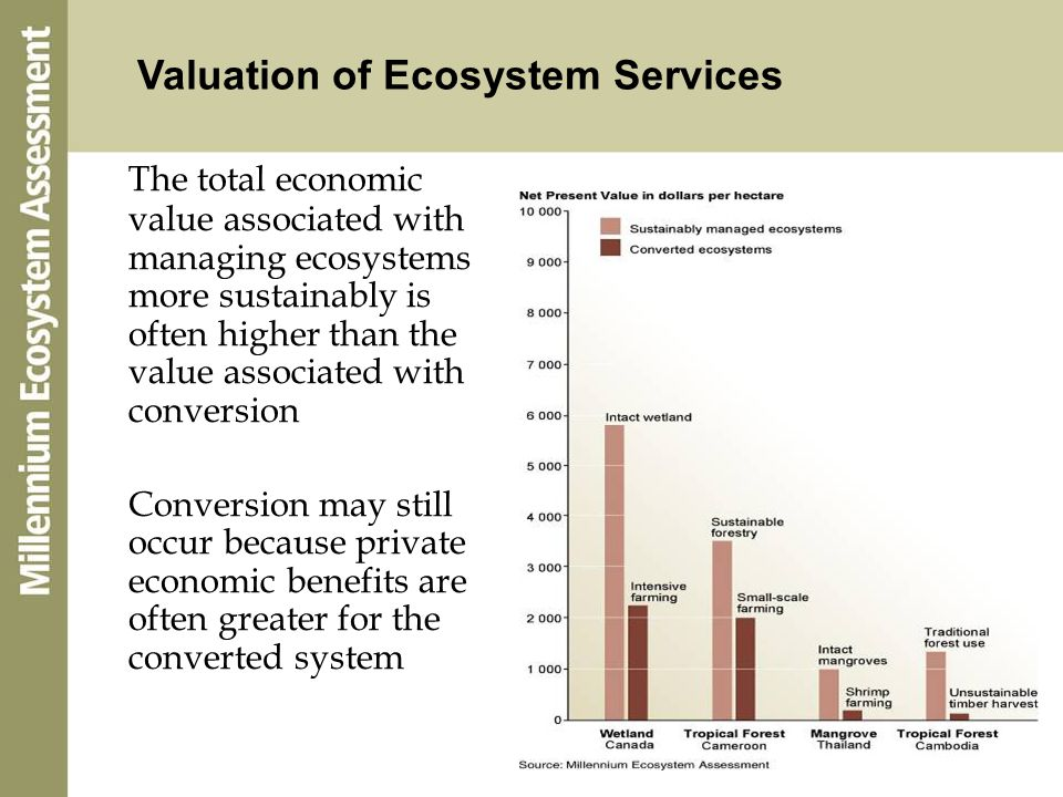 Valuation of Ecosystem Services