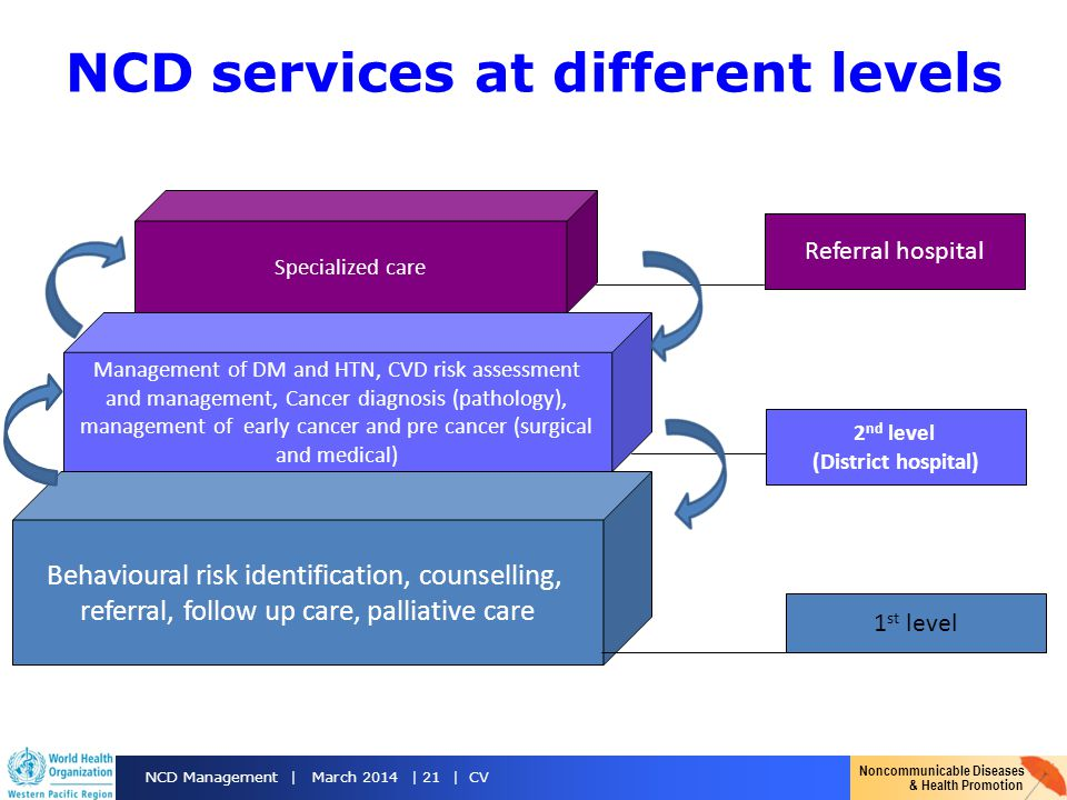 NCD services at different levels