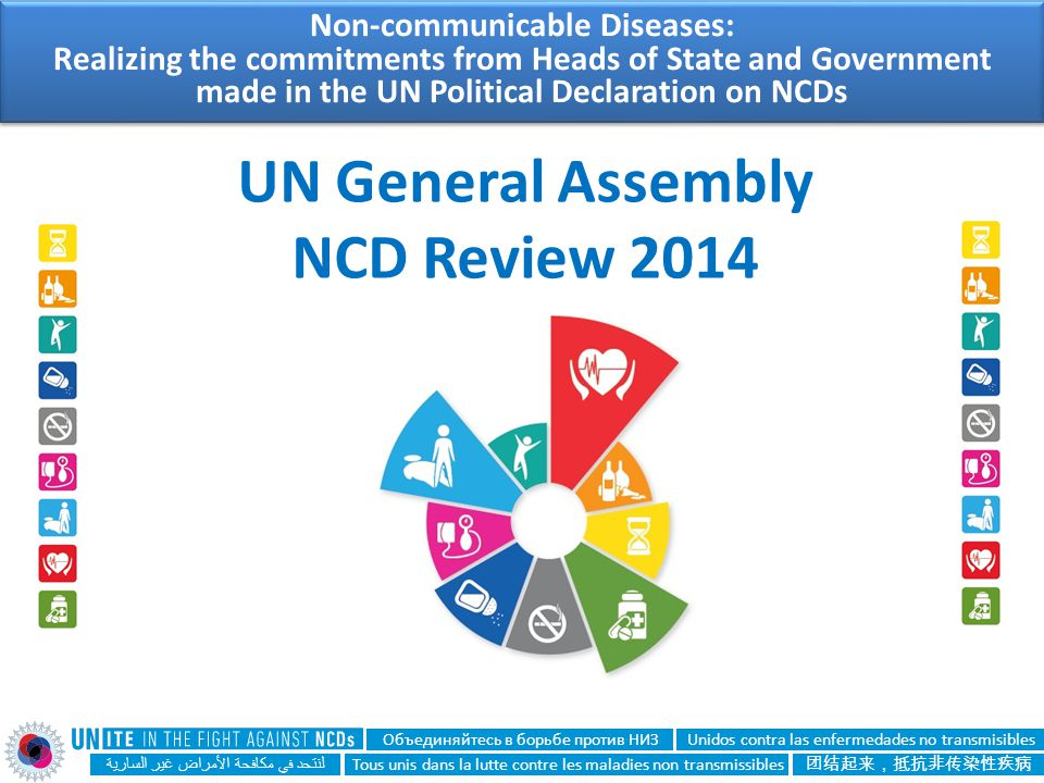 UN General Assembly NCD Review 2014