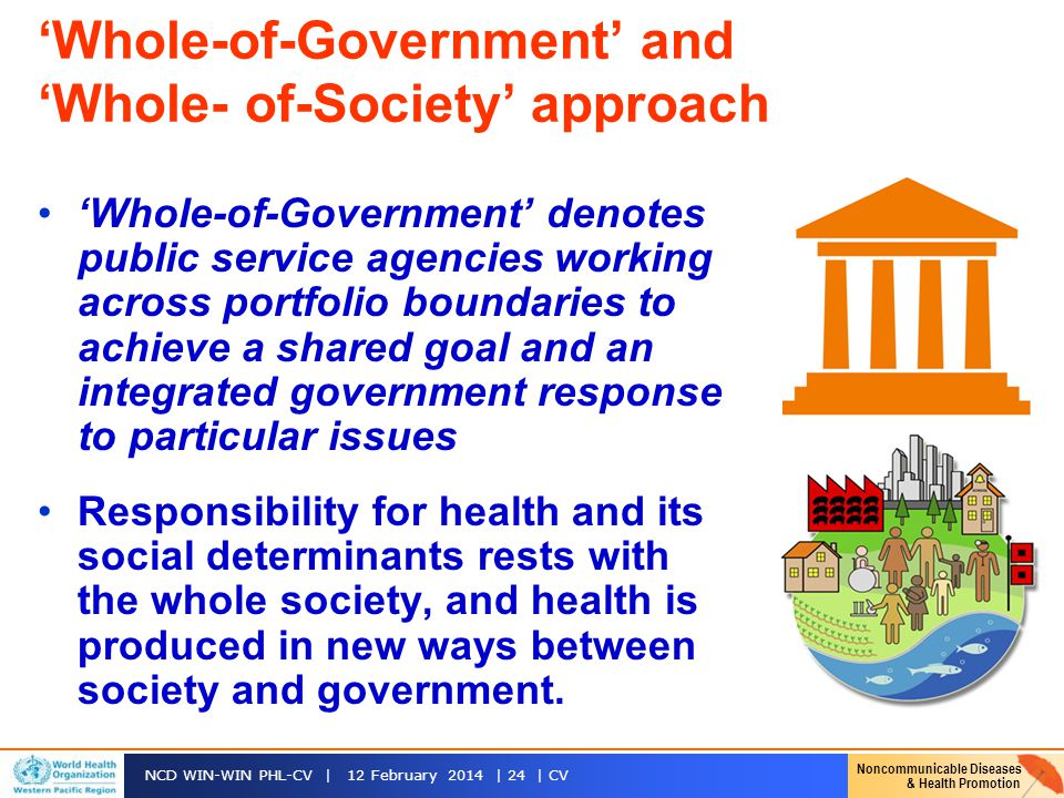 'Whole-of-Government' and 'Whole- of-Society' approach