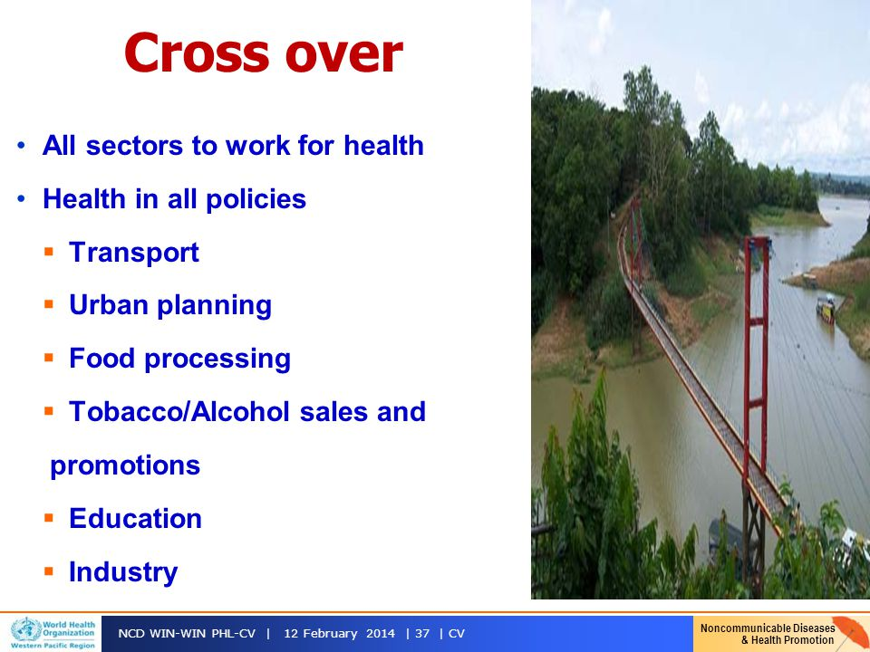 Cross over All sectors to work for health Health in all policies