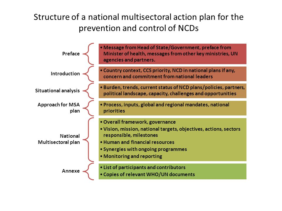 Structure of a national multisectoral action plan for the prevention and control of NCDs