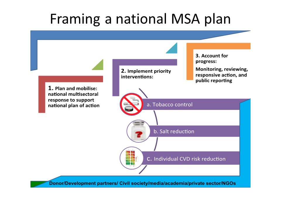 Framing a national MSA plan