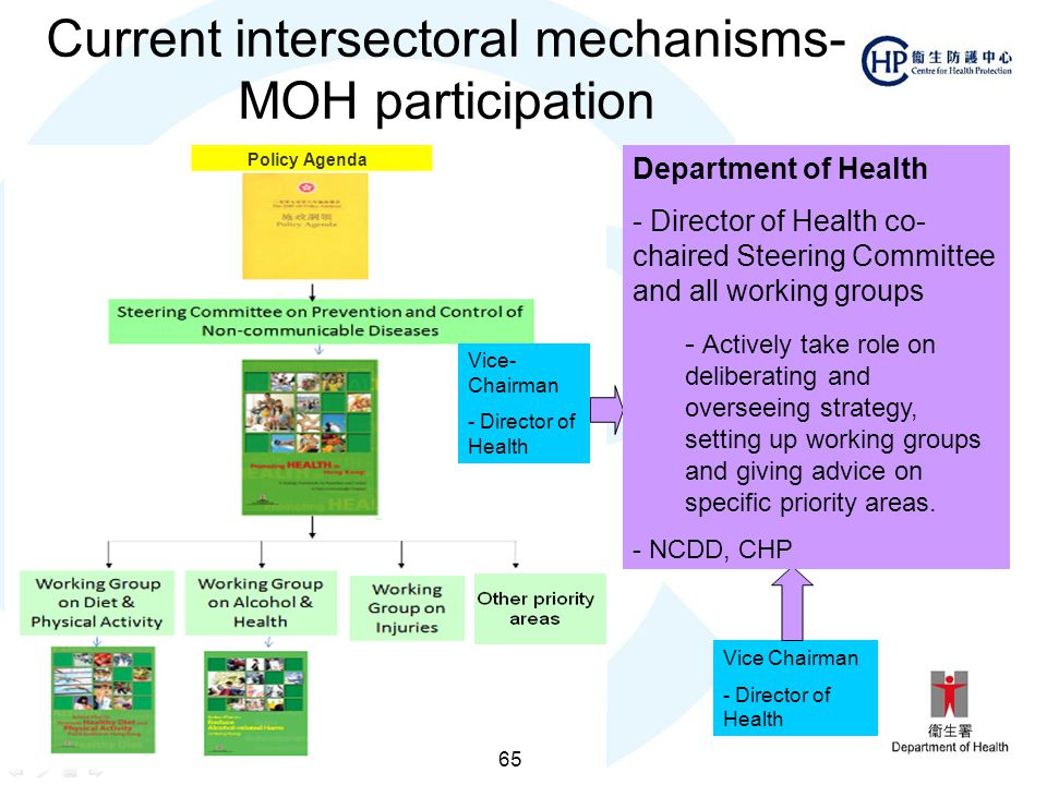 Current intersectoral mechanisms- MOH participation