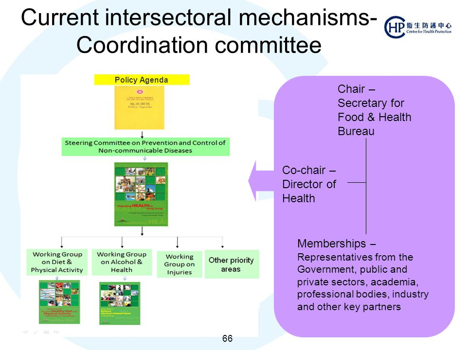 Current intersectoral mechanisms- Coordination committee