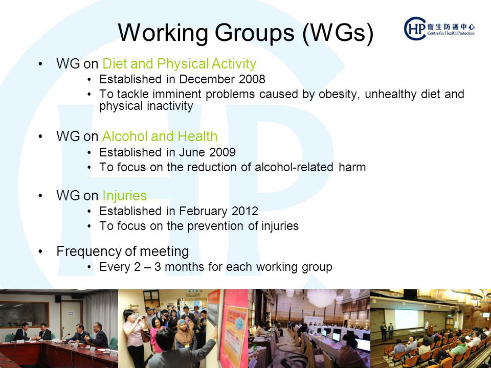 Working Groups (WGs) WG on Diet and Physical Activity