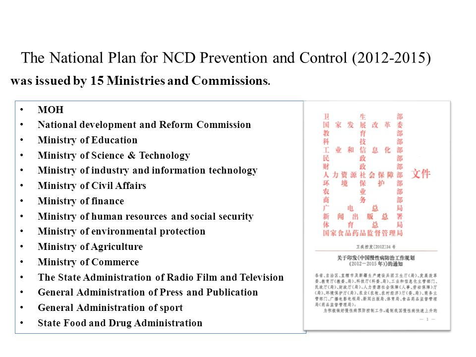 The National Plan for NCD Prevention and Control (2012-2015)