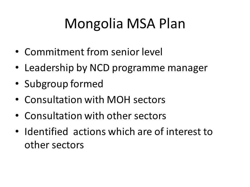 Mongolia MSA Plan Commitment from senior level