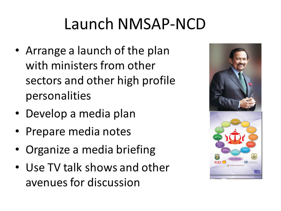 Launch NMSAP-NCD Arrange a launch of the plan with ministers from other sectors and other high profile personalities.