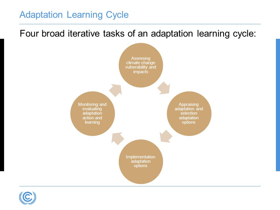 Adaptation Learning Cycle