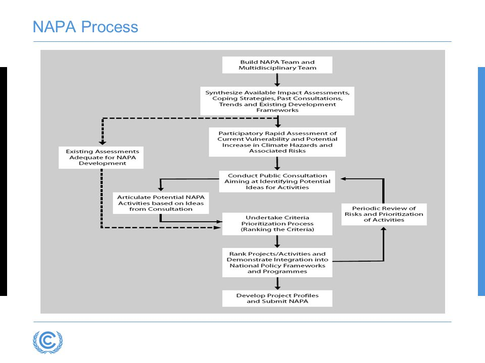 NAPA Process