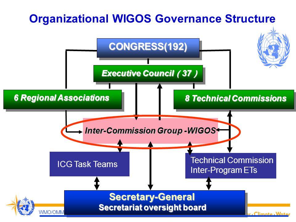 Organizational WIGOS Governance Structure
