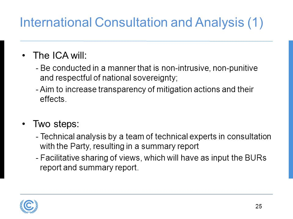 International Consultation and Analysis (1)