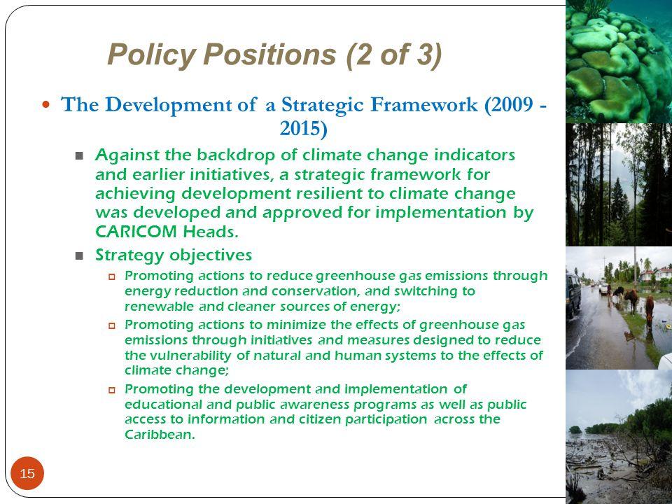 The Development of a Strategic Framework (2009 - 2015)
