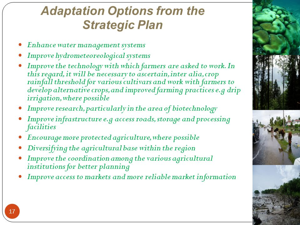 Adaptation Options from the Strategic Plan
