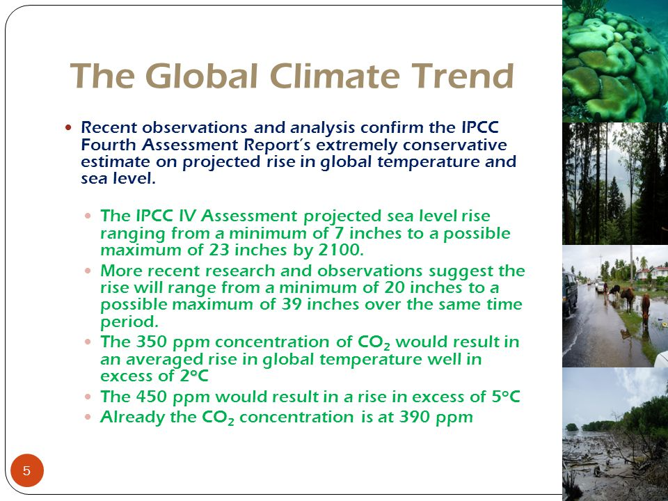 The Global Climate Trend