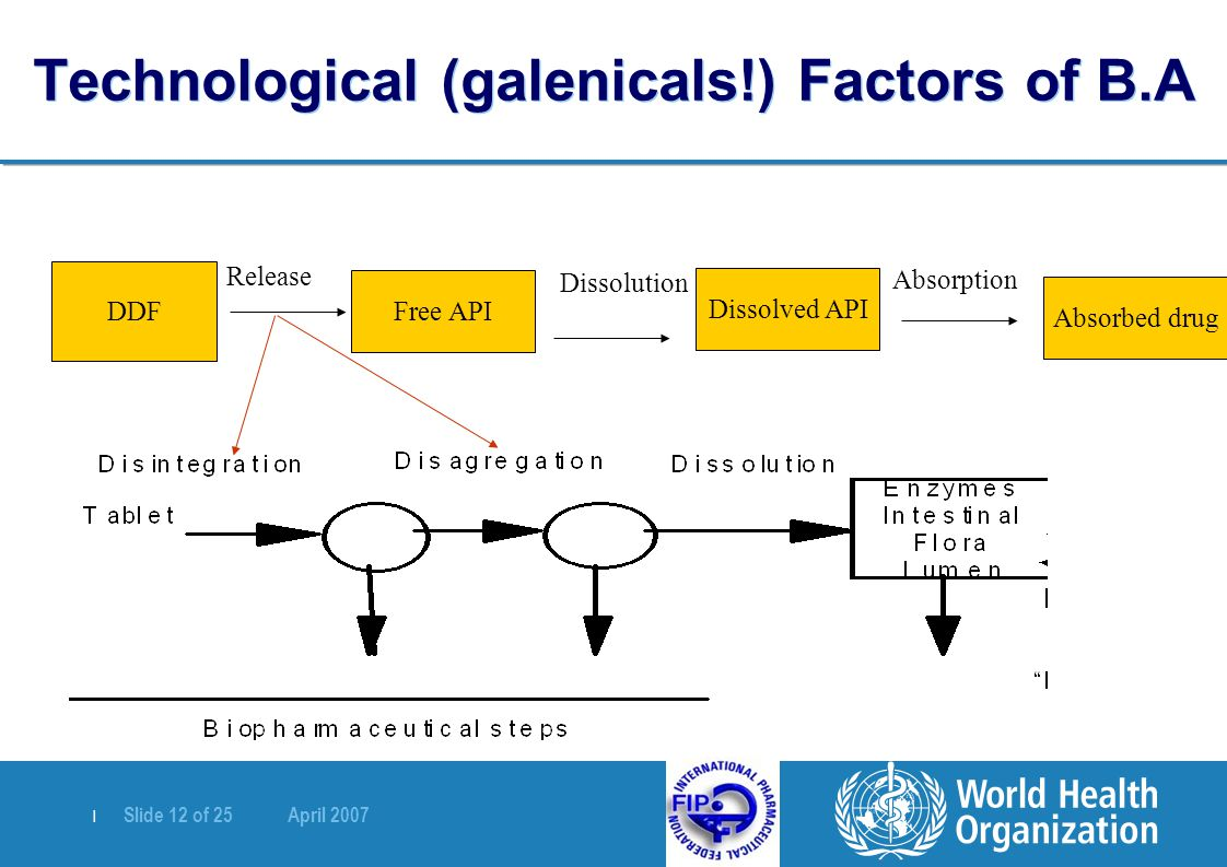Technological (galenicals!) Factors of B.A