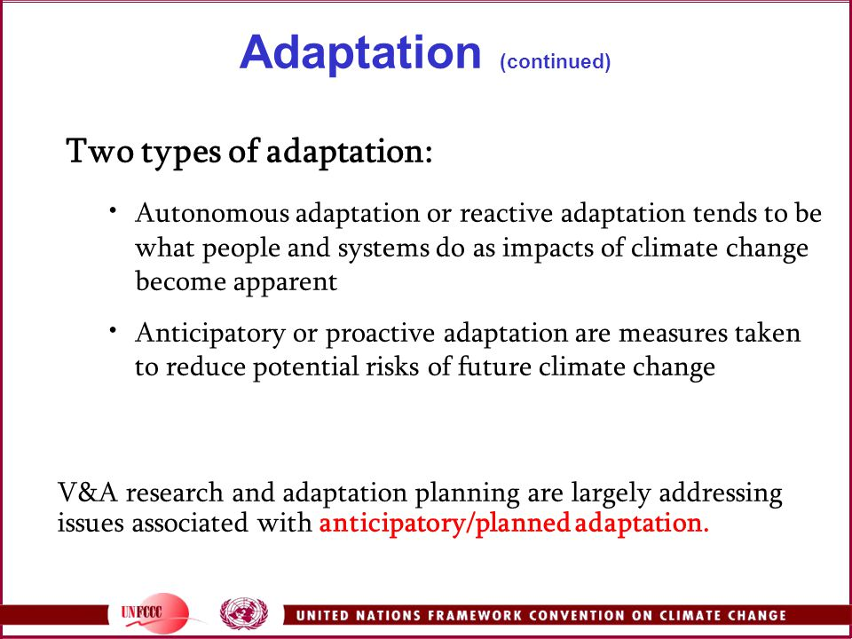 Adaptation (continued)