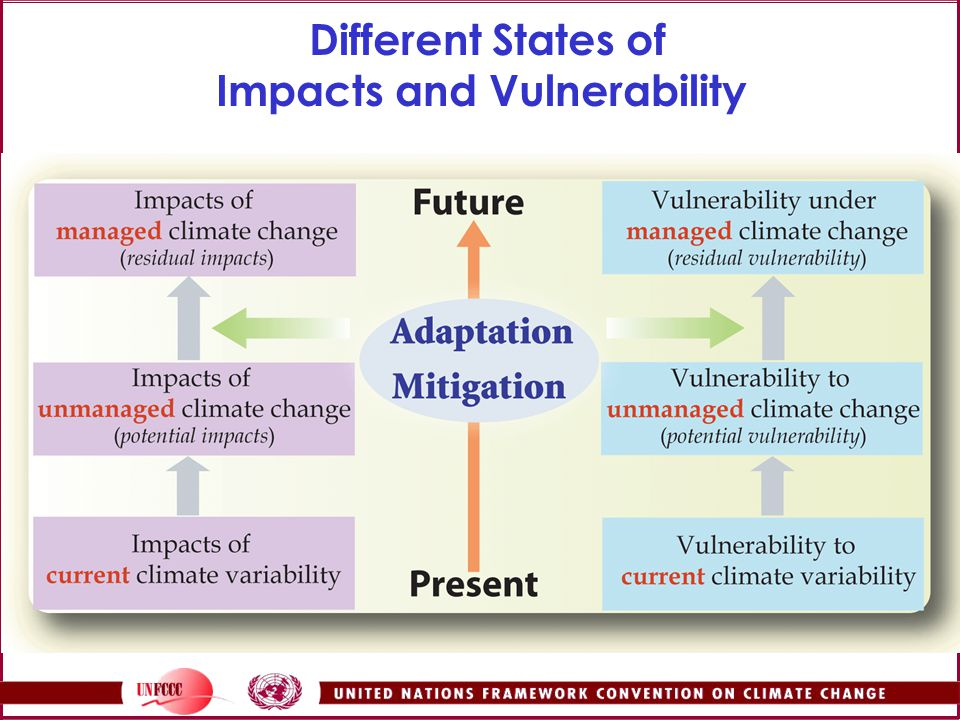 Different States of Impacts and Vulnerability