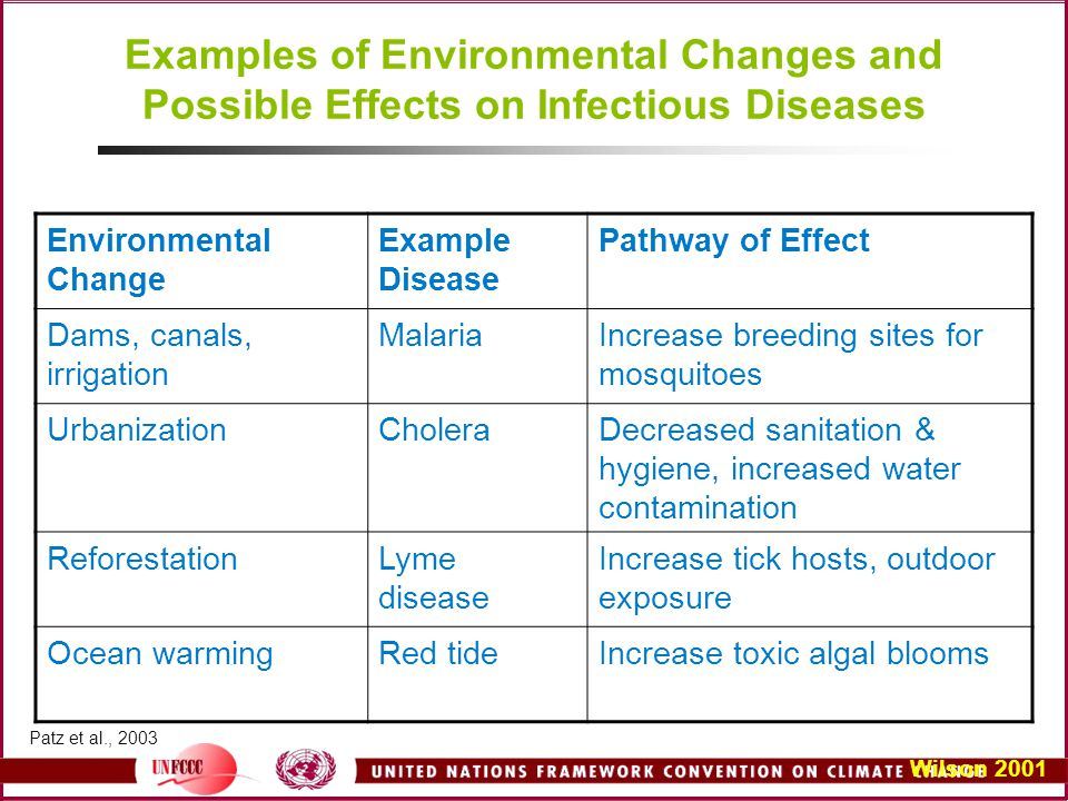 Examples of Environmental Changes and Possible Effects on Infectious Diseases