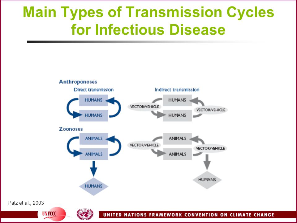 Main Types of Transmission Cycles for Infectious Disease