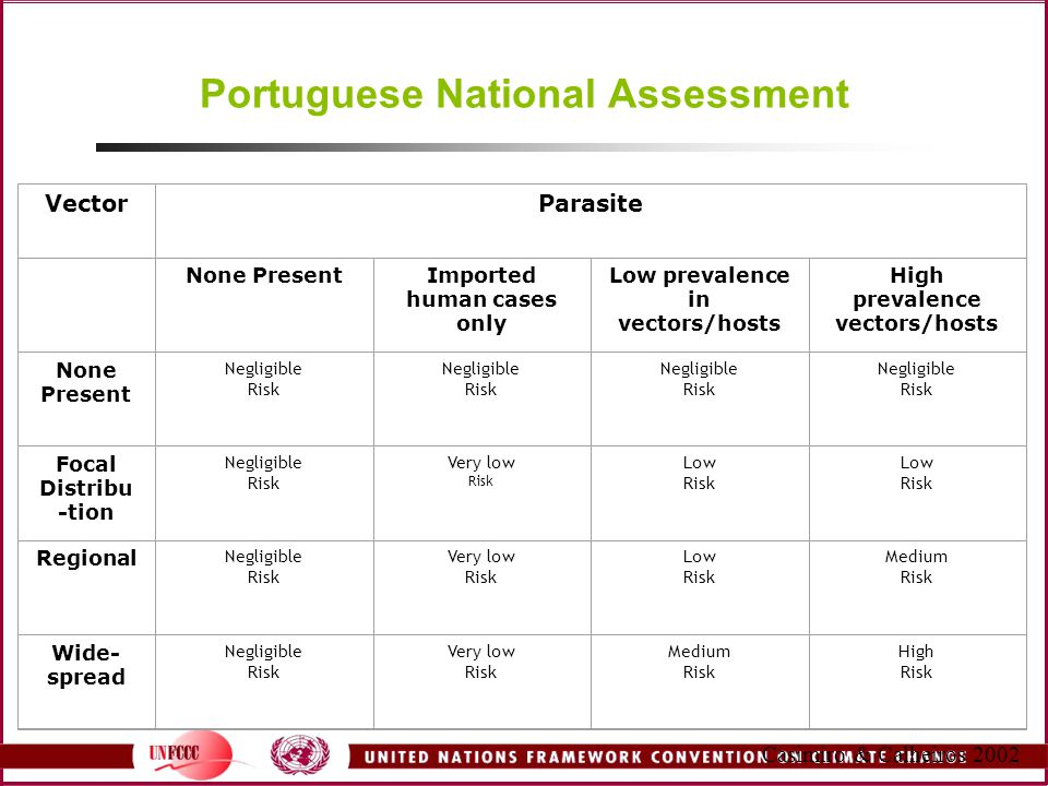 Portuguese National Assessment