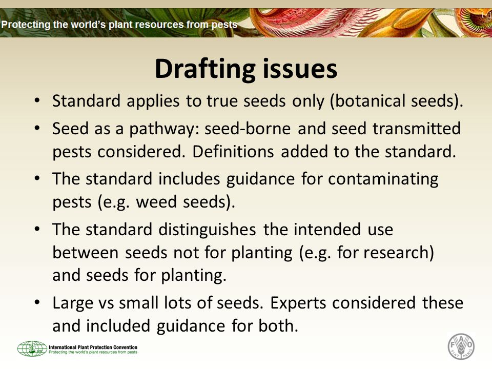 Drafting issues Standard applies to true seeds only (botanical seeds).