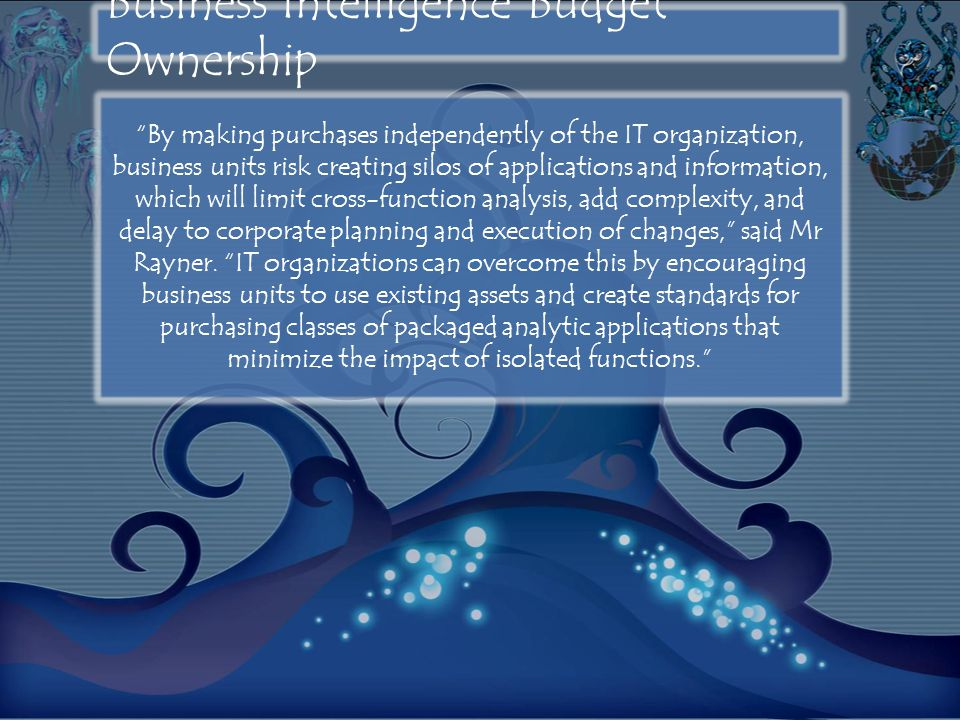 Business Intelligence Budget Ownership