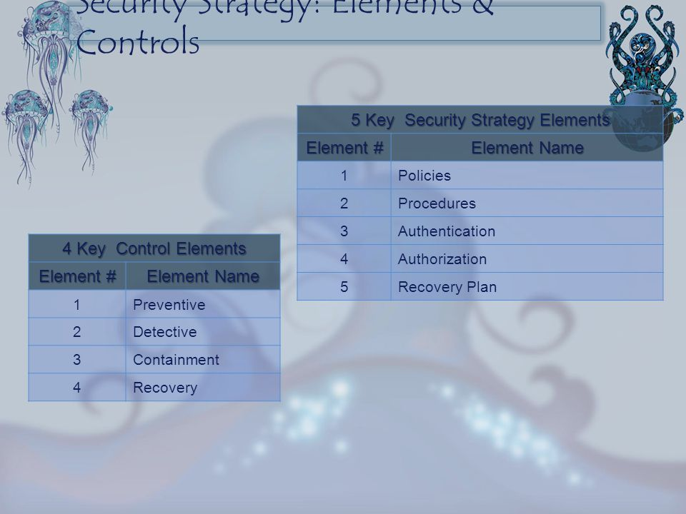 Security Strategy: Elements & Controls