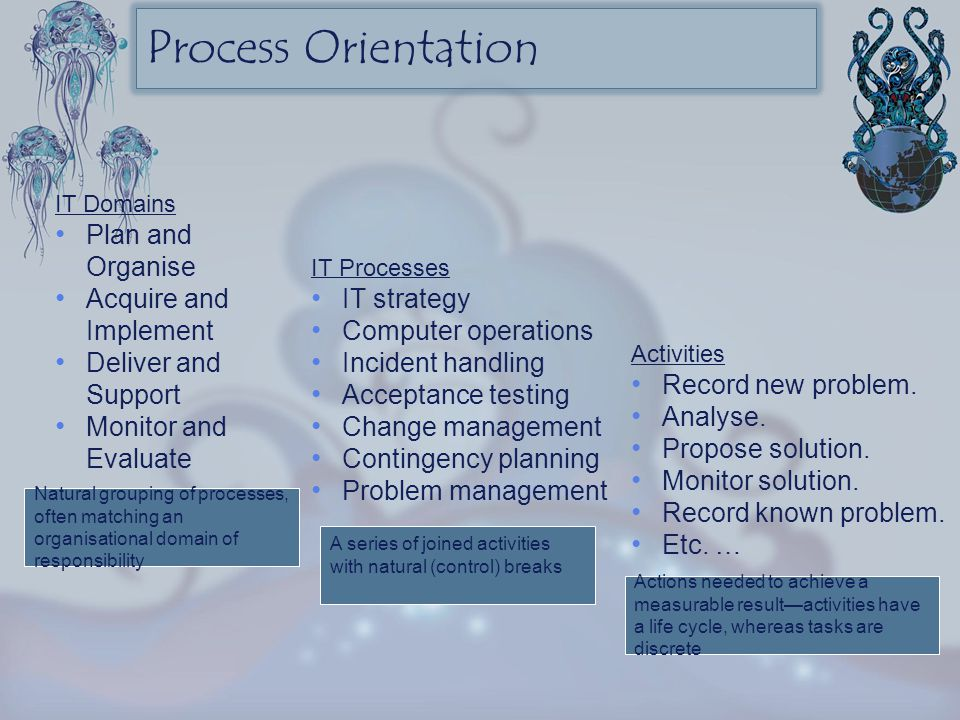 Process Orientation Plan and Organise Acquire and Implement